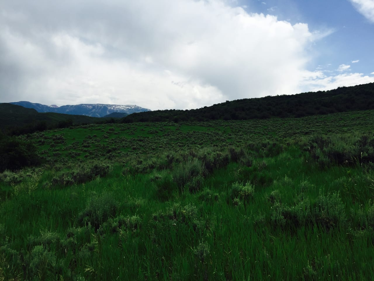 Design Your Dream Mountain Retreat Here