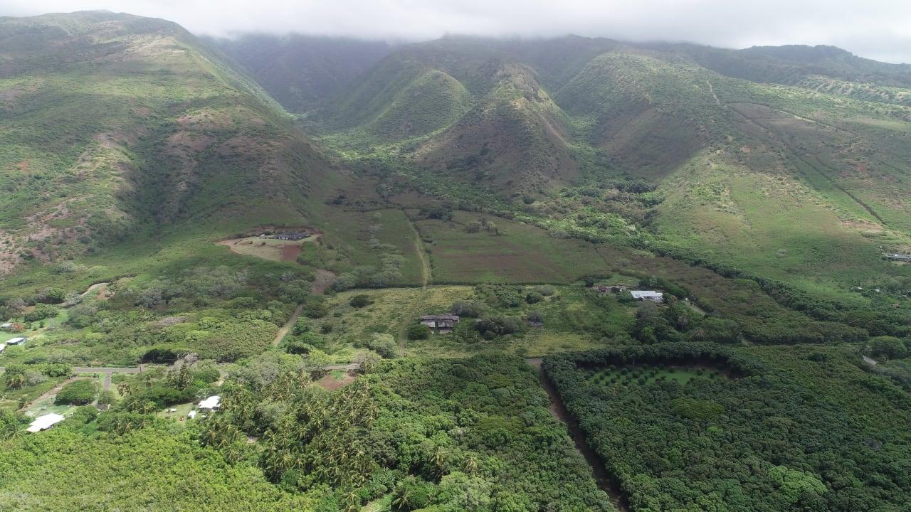 Mapulehu Valley