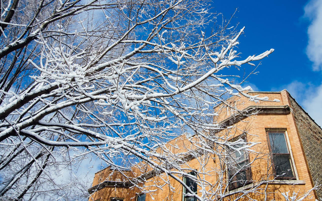 5 Ways Your House Can be Affected by the Winter Cold