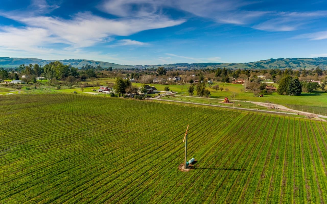 Sonoma County Home Sales Soaring