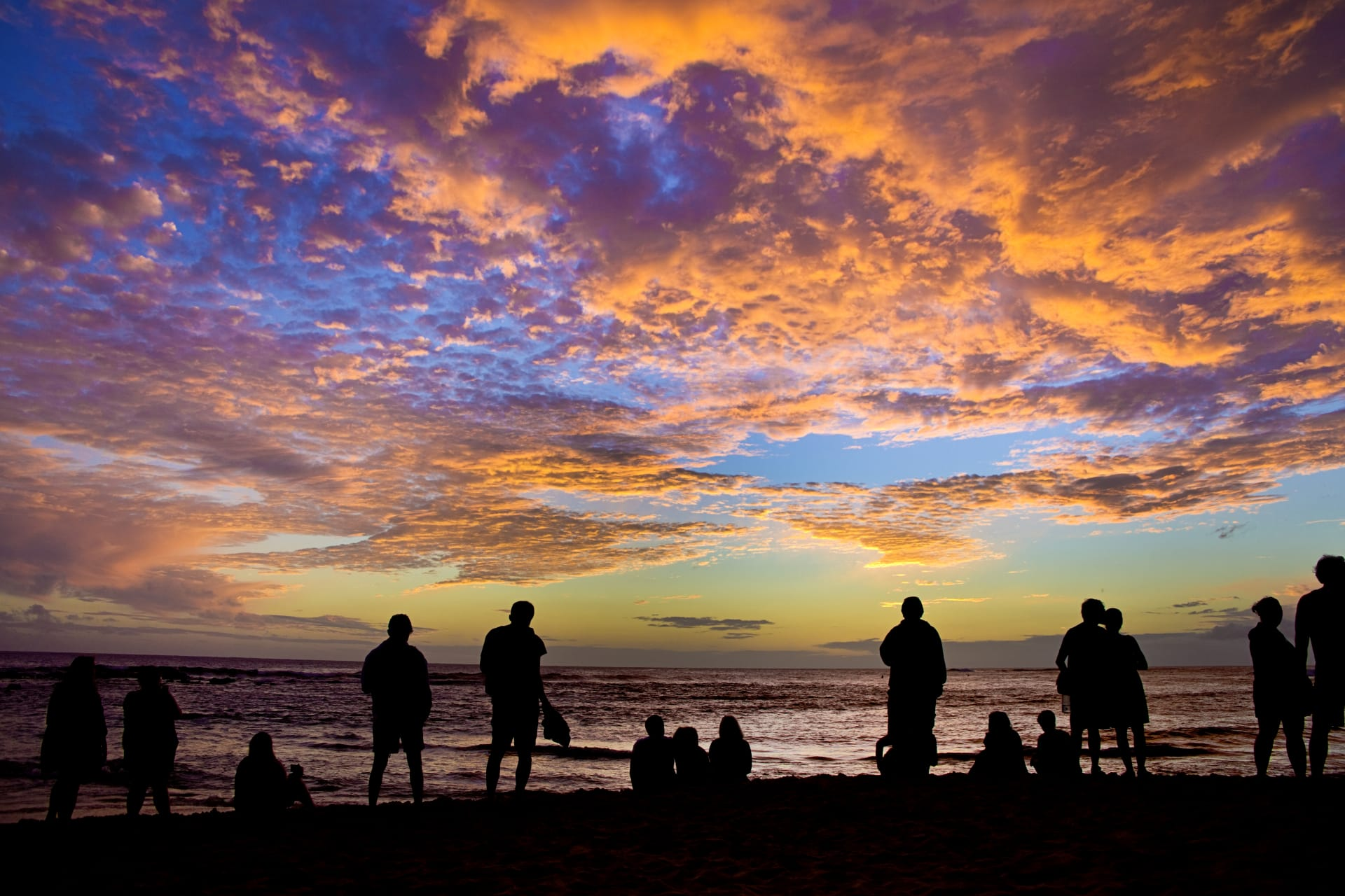 2019 Kauai Tourism Activity by the Numbers