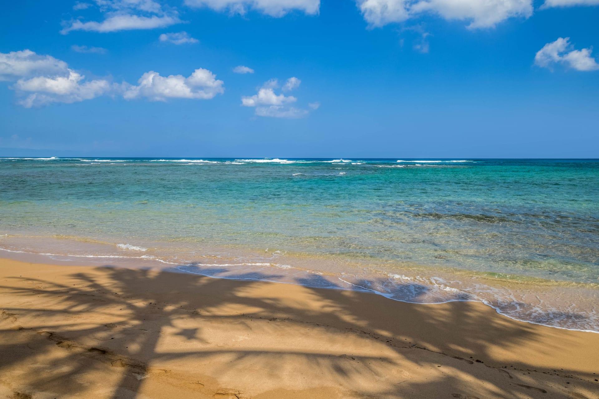6 Ocean View Homes Under $1.5 Million