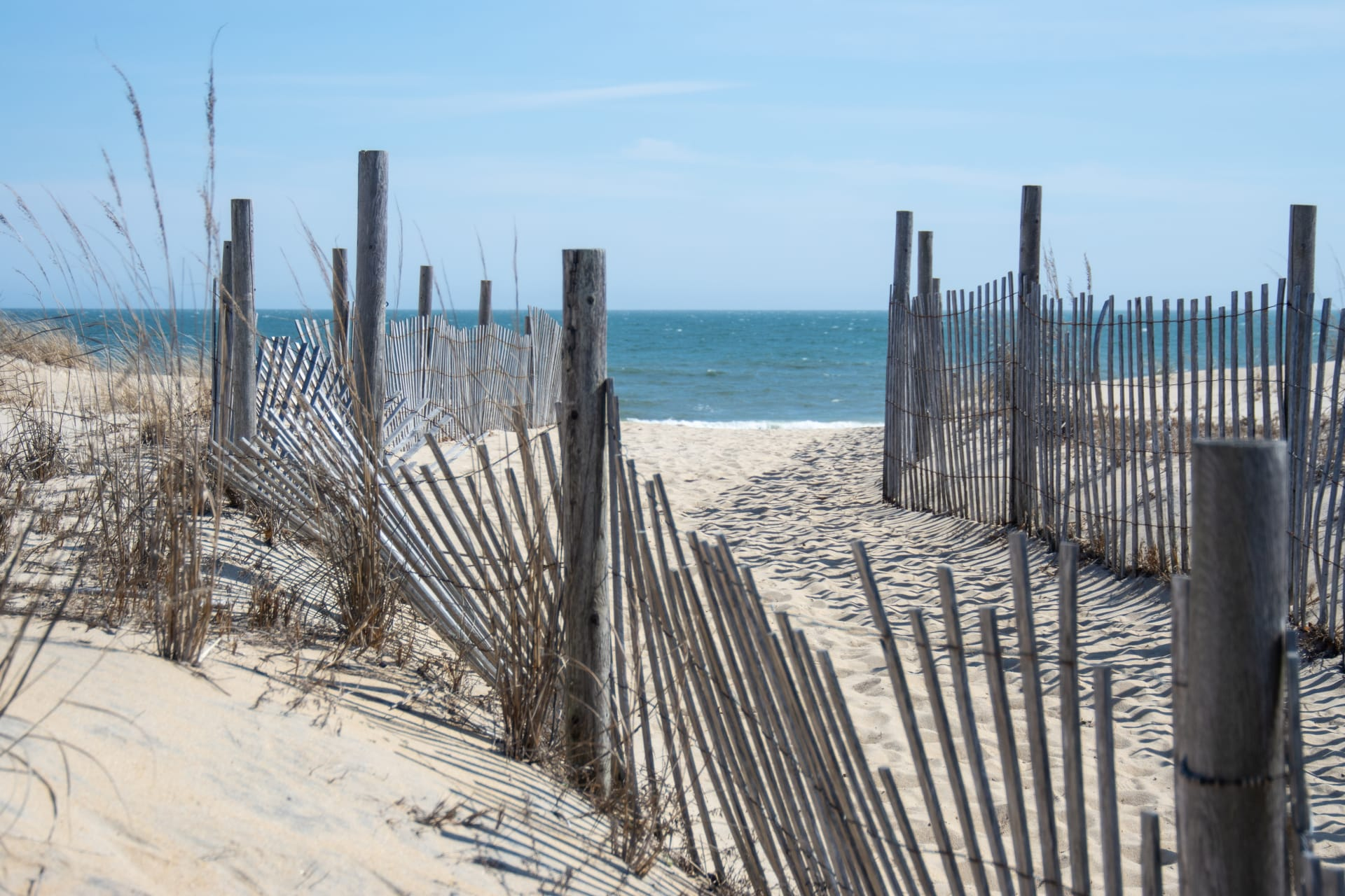 Best Beach Towns to Visit Near DC this Summer
