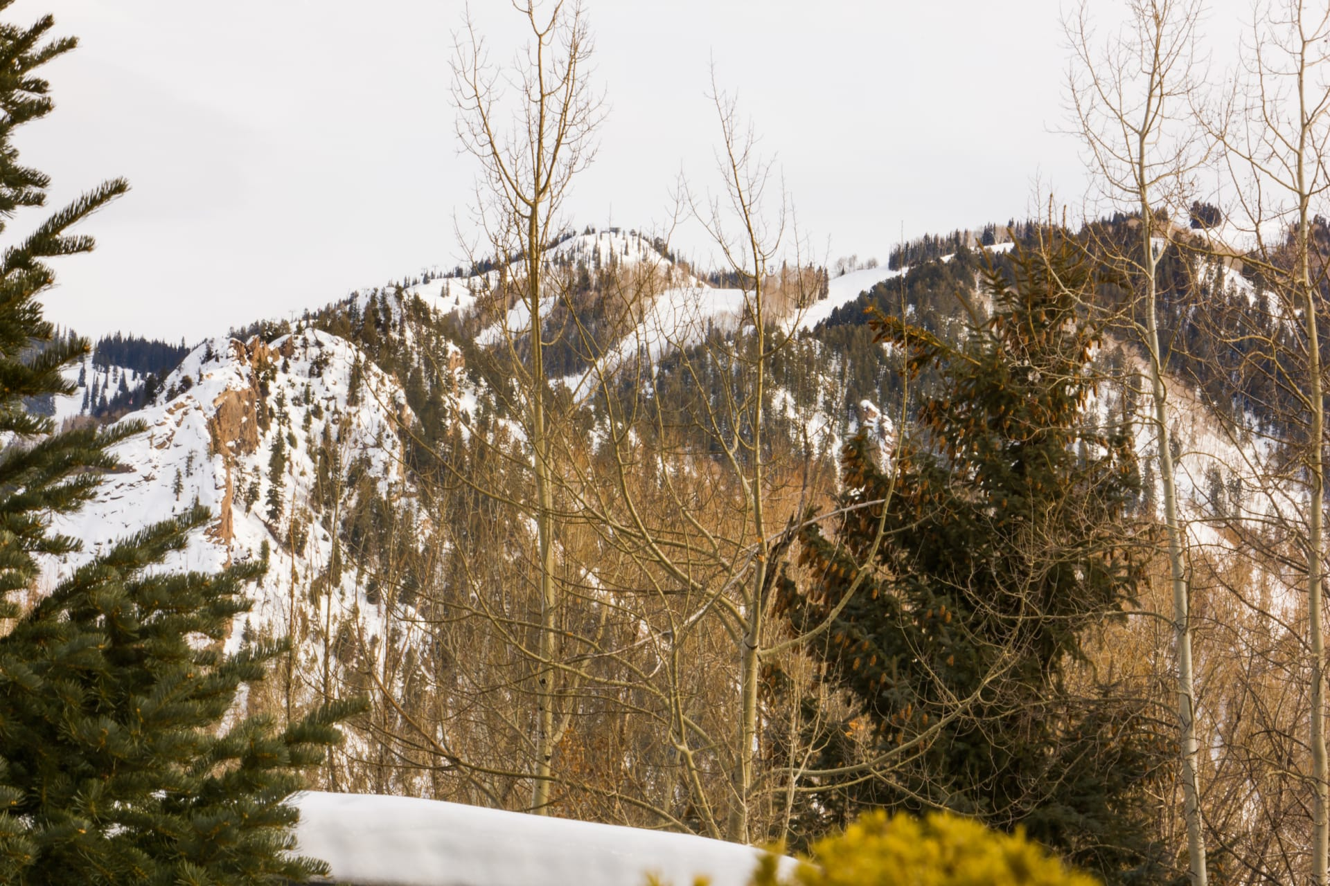 European Alpine Charm