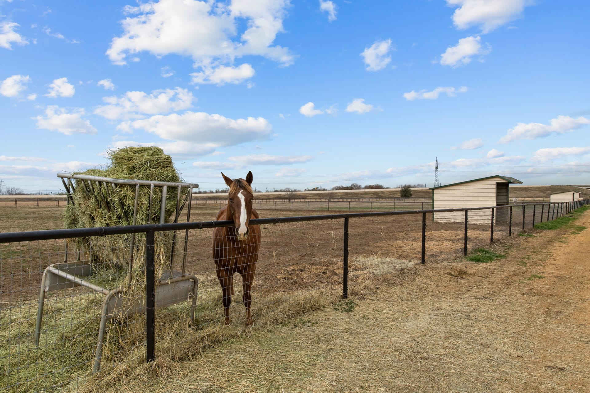Diamond Creek Ranch photo