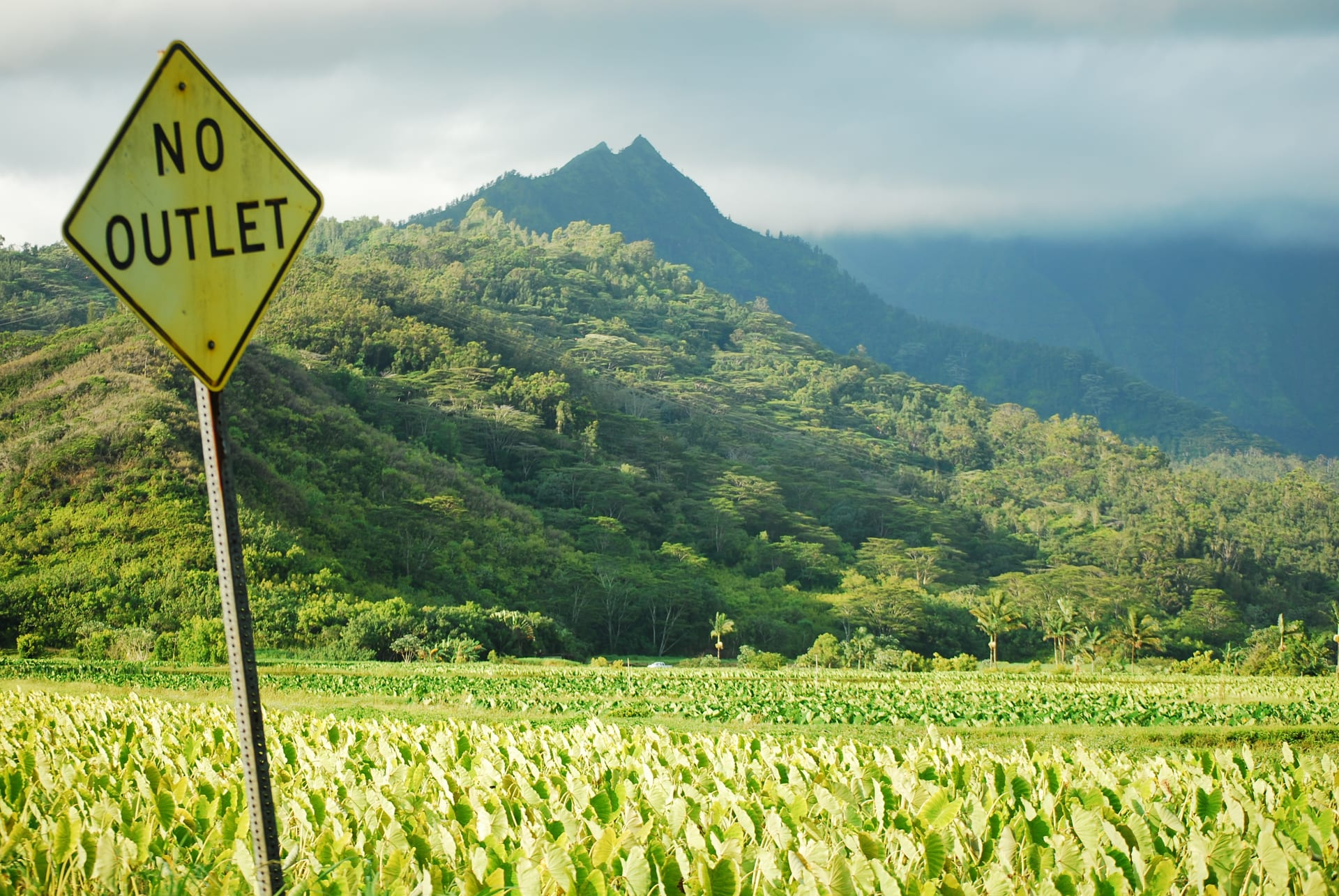 Princeville to Hanalei: Single-lane Traffic All January