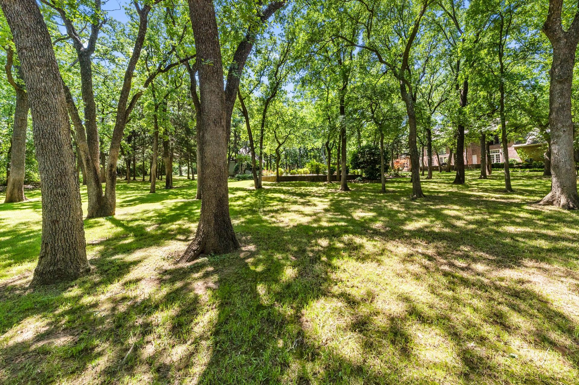 18 Woodland Ct photo