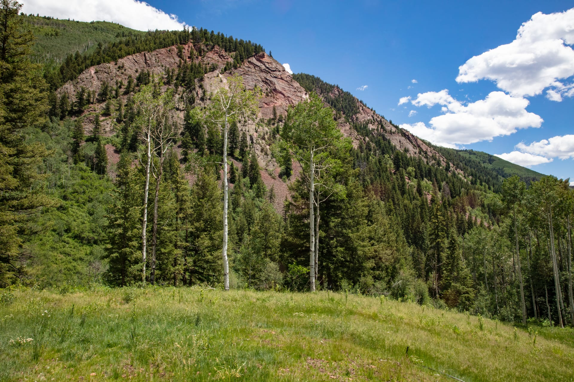 Aspen's ultimate estate building site