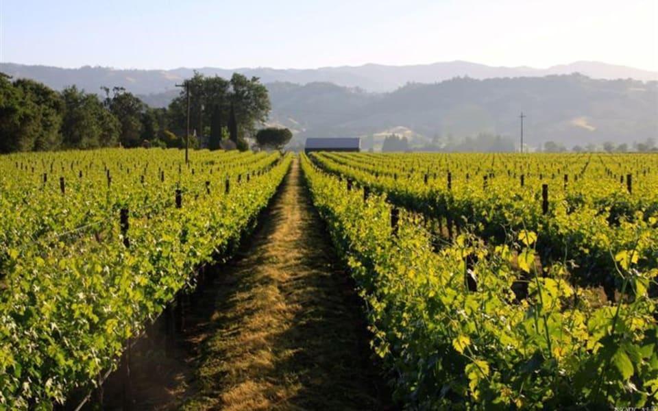 Sonoma County preview