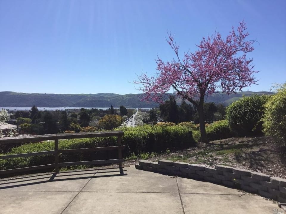 Downtown Benicia  preview