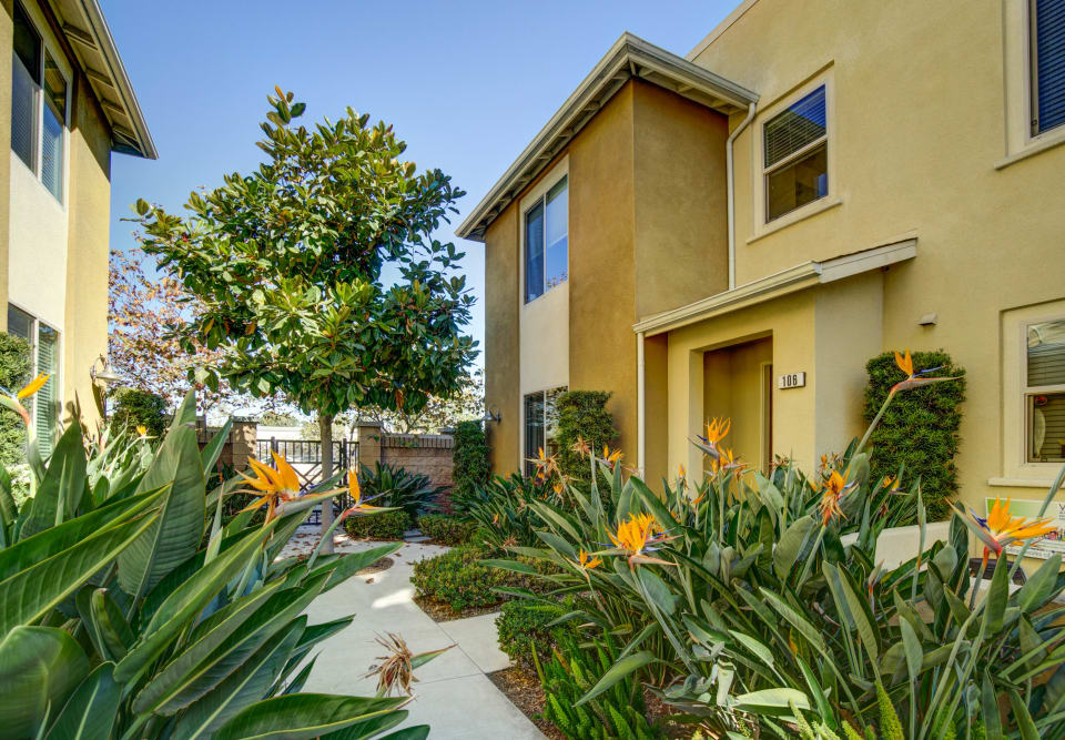 5525 Ocean Ave #106 preview