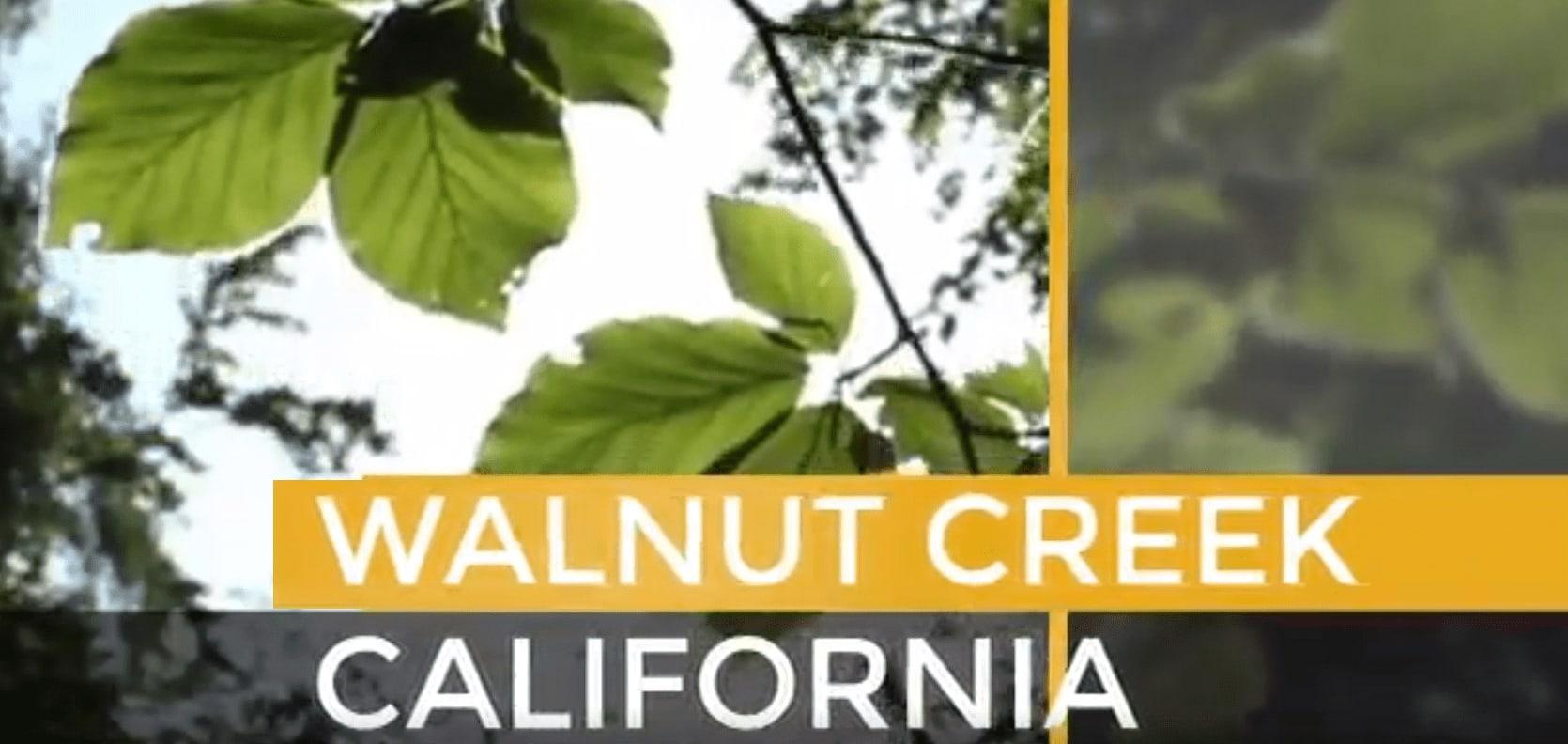 Walnut Creek video preview