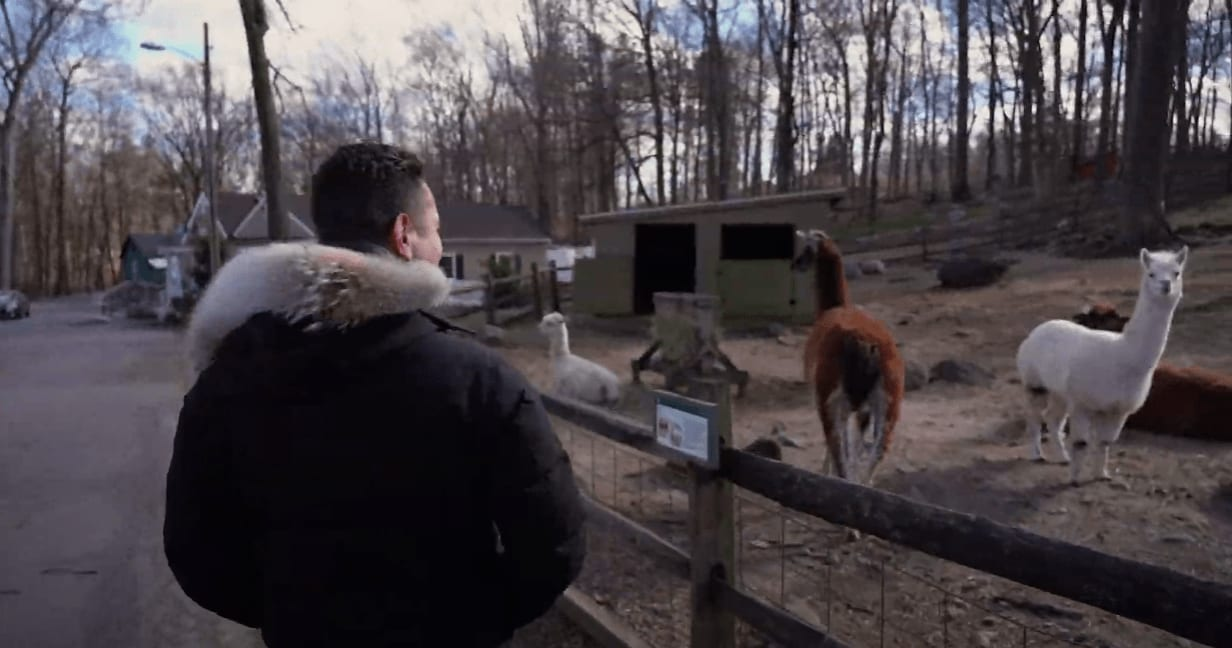 FOMO Episode 5: Stamford Museum and Nature Center video preview