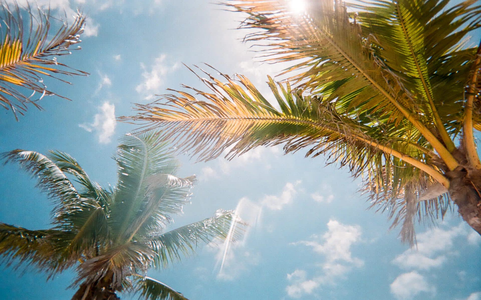 5 Reasons Chicago Residents Buy Vacation Homes in Southwest Florida
