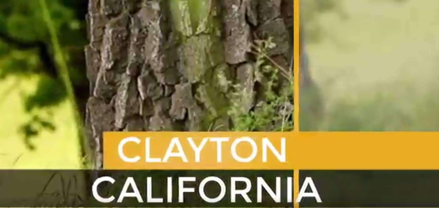 Clayton video preview