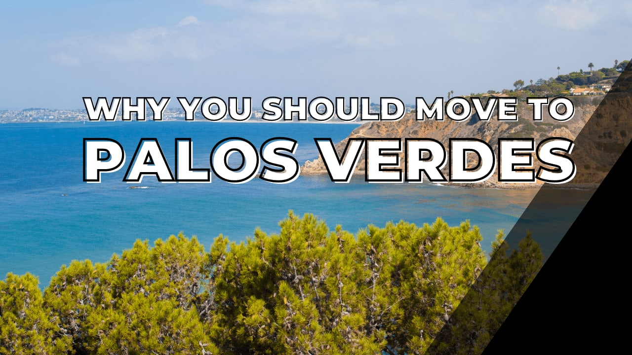 Why you should move to PV video preview