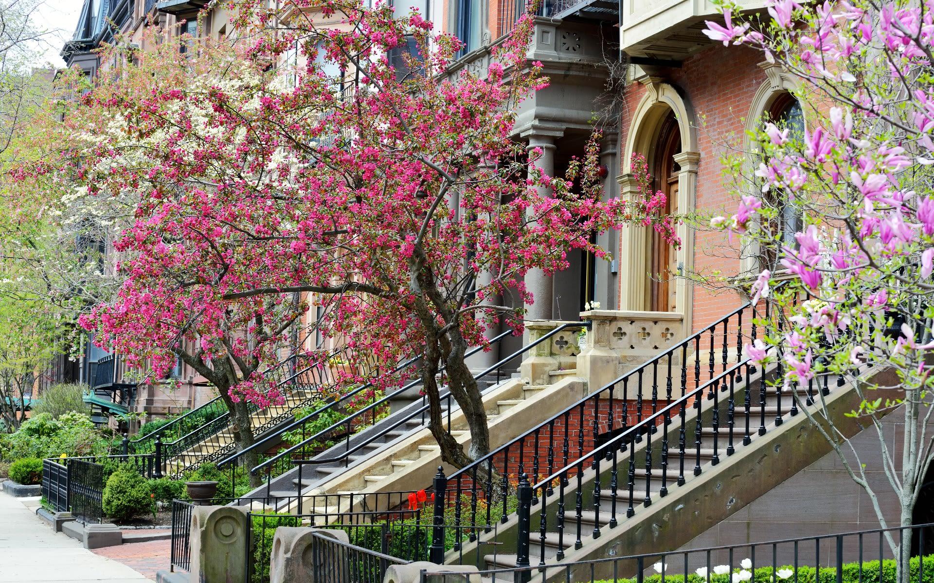 The Neighborhood Expert video preview
