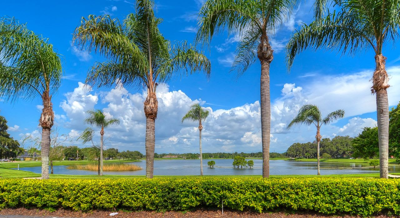 Homes for Sale in Twin Lakes, FL