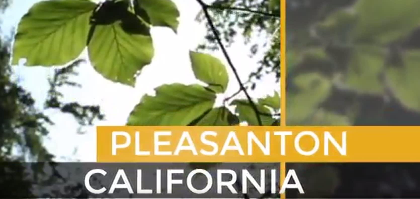 Pleasanton video preview