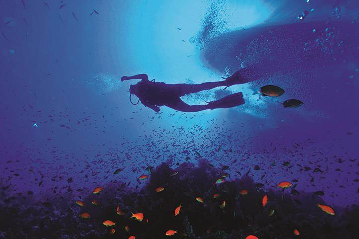 RESIDE® | Diving the Eco-Friendly Way