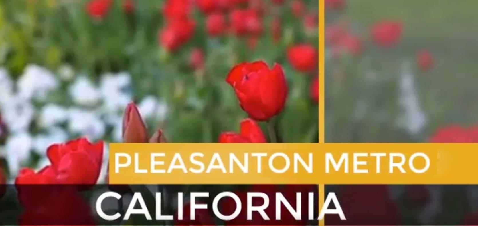 Pleasanton Metro video preview