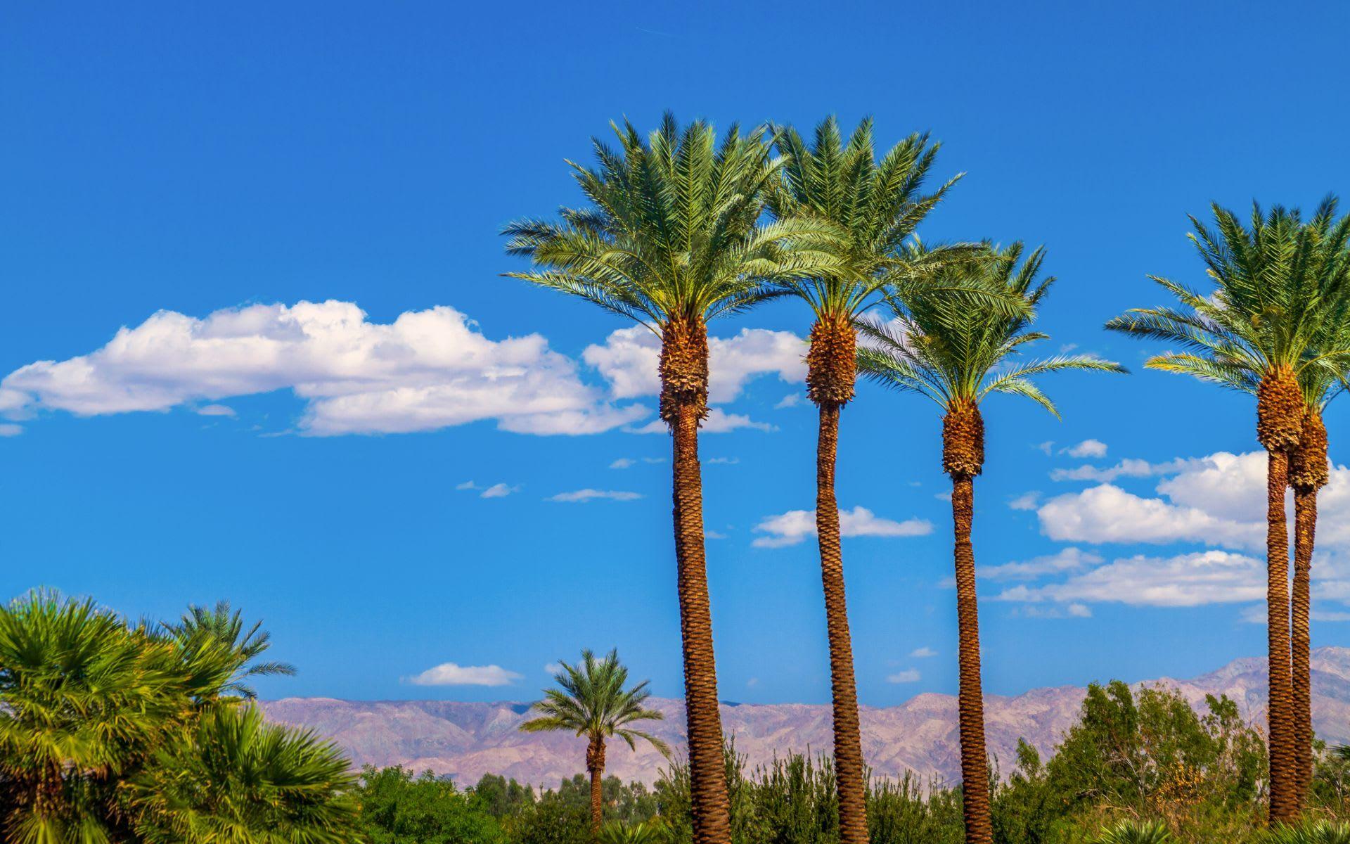 Rancho Mirage image