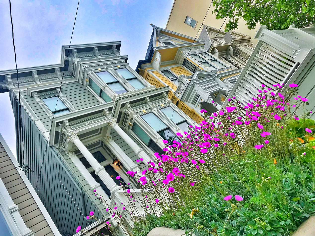Painted ladies house style