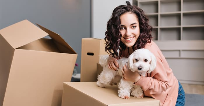 Moving With Your Pets? Avoid These Mistakes