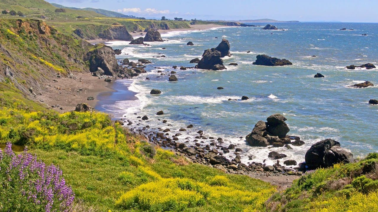 Sonoma County Welcomes Visitors