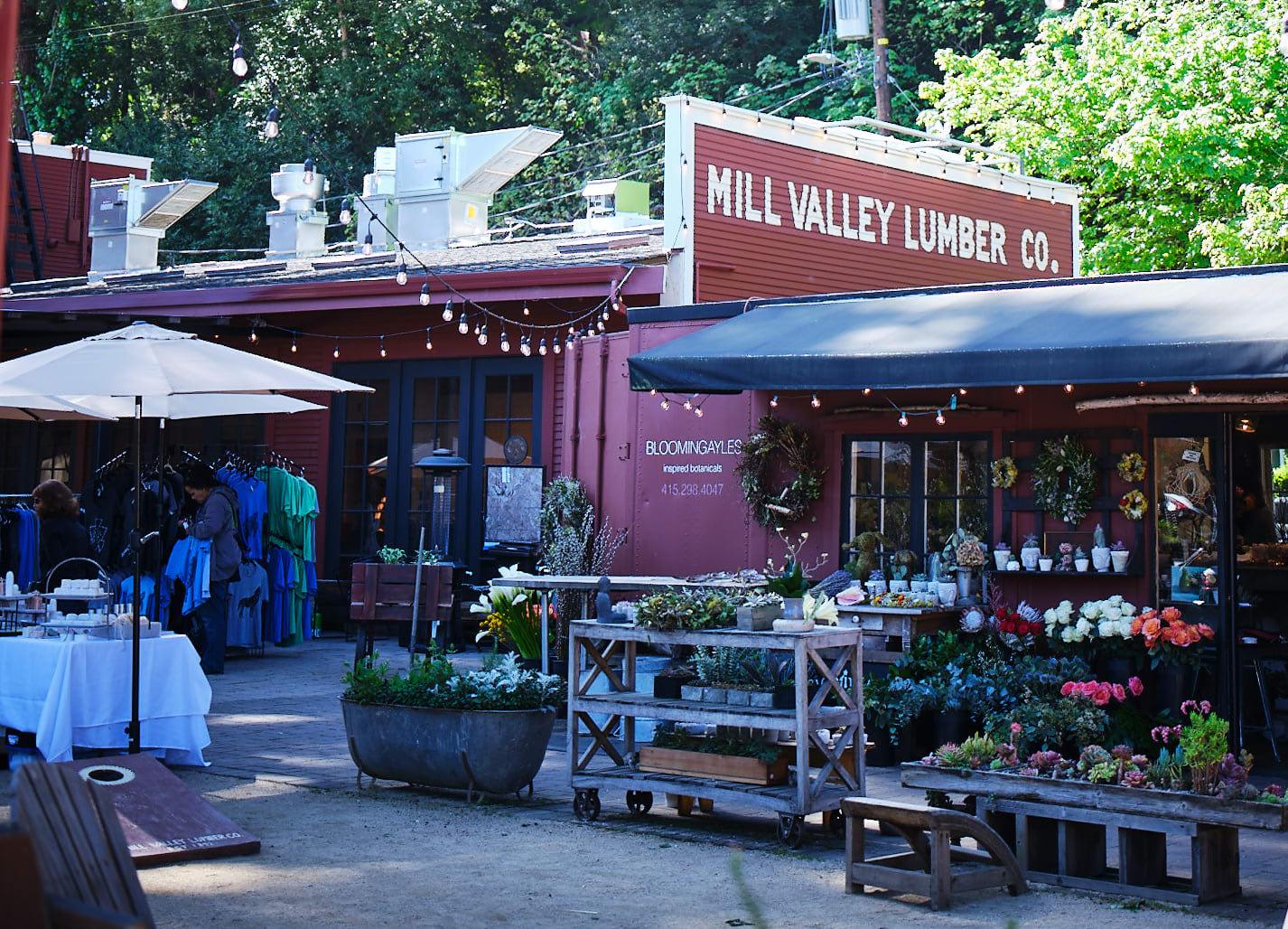MILL VALLEY neighborhood