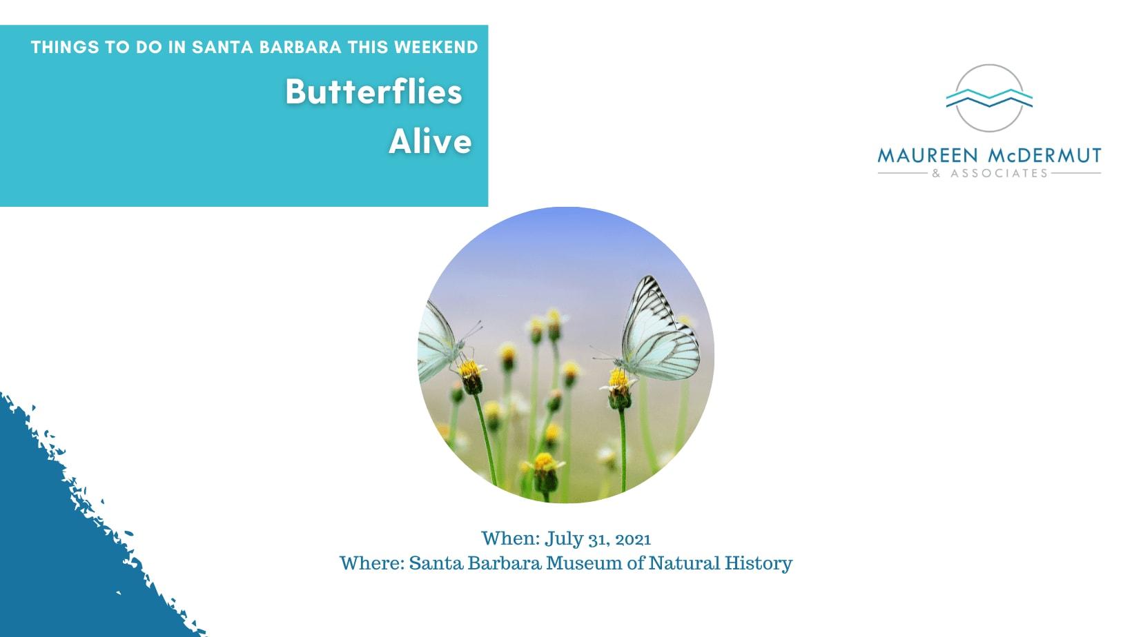 Butterflies Alive image