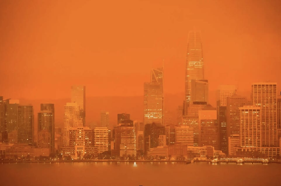 San Francisco skyline in a sea of orange.