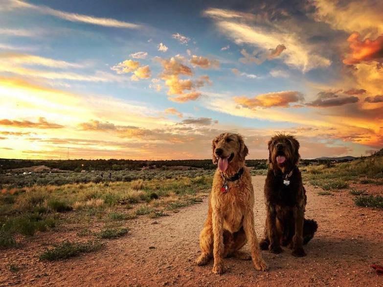 Santa Fe Dog Parks