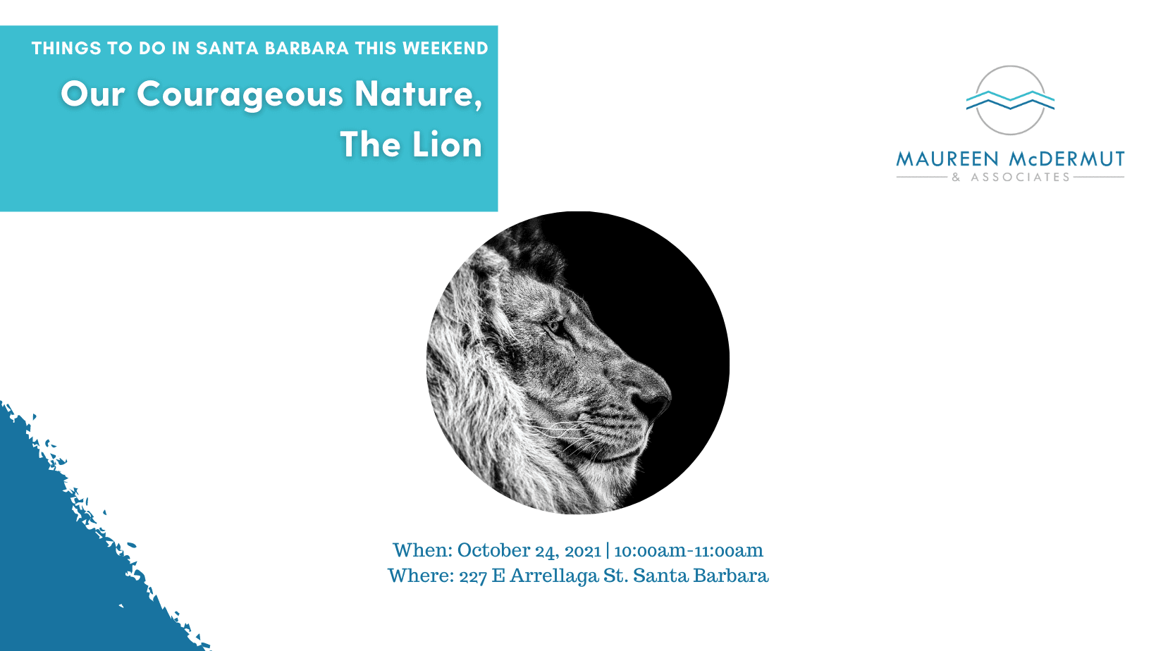 Our Courageous Nature, The Lion image