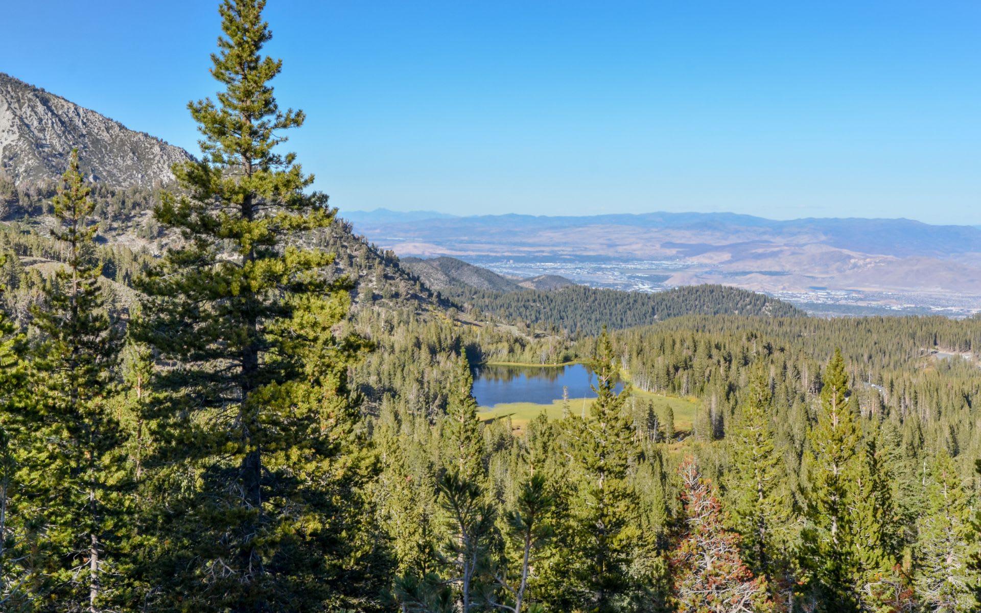 Tahoe-Reno image