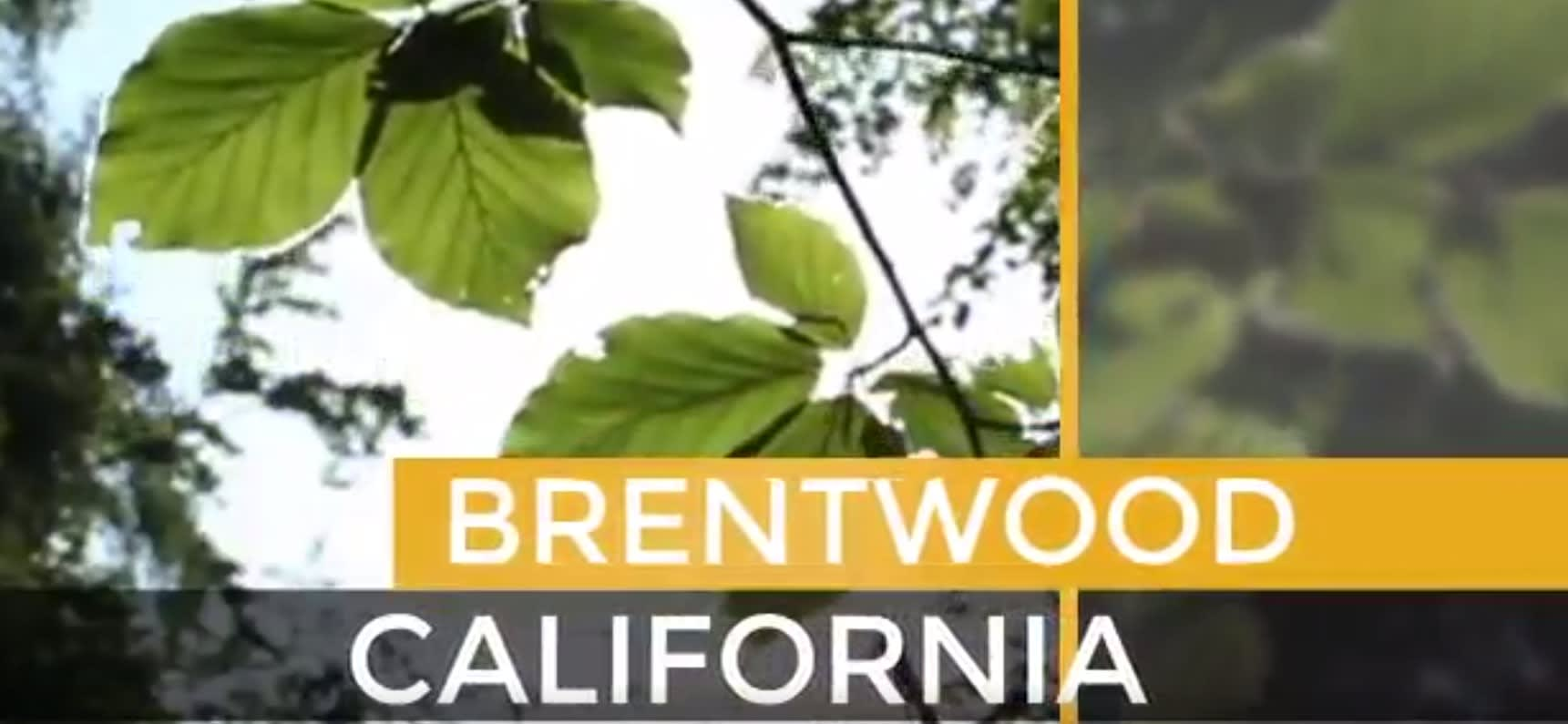 Brentwood Metro video preview