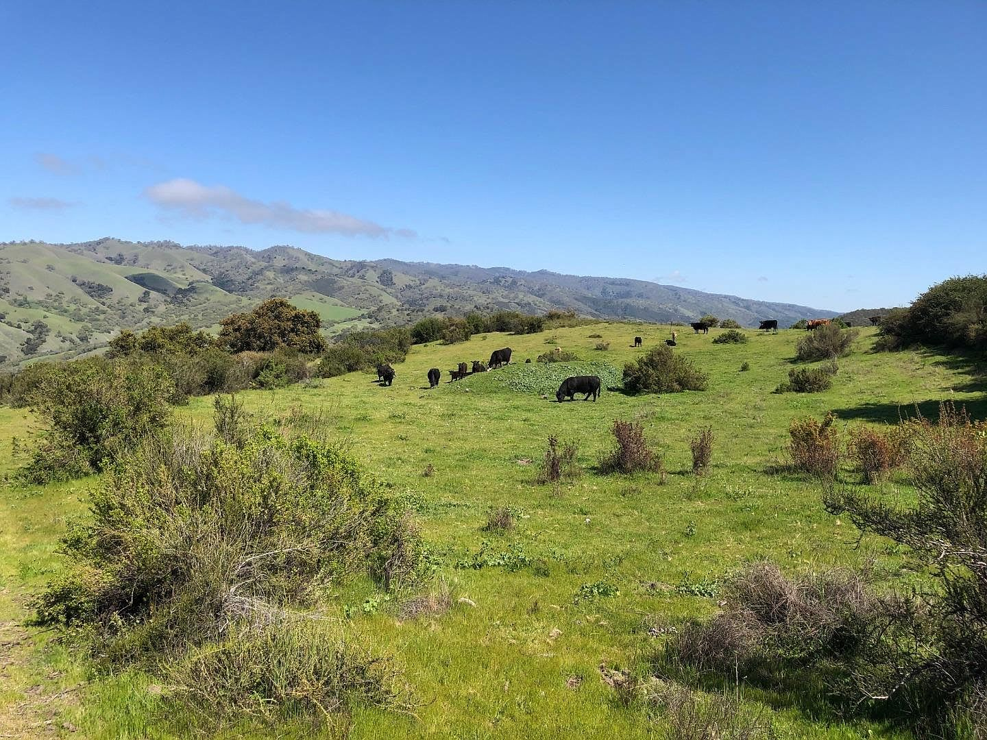 Indian Creek Ranch, 36000 Carmel Valley Road, Carmel Valley, CA 93924 video preview