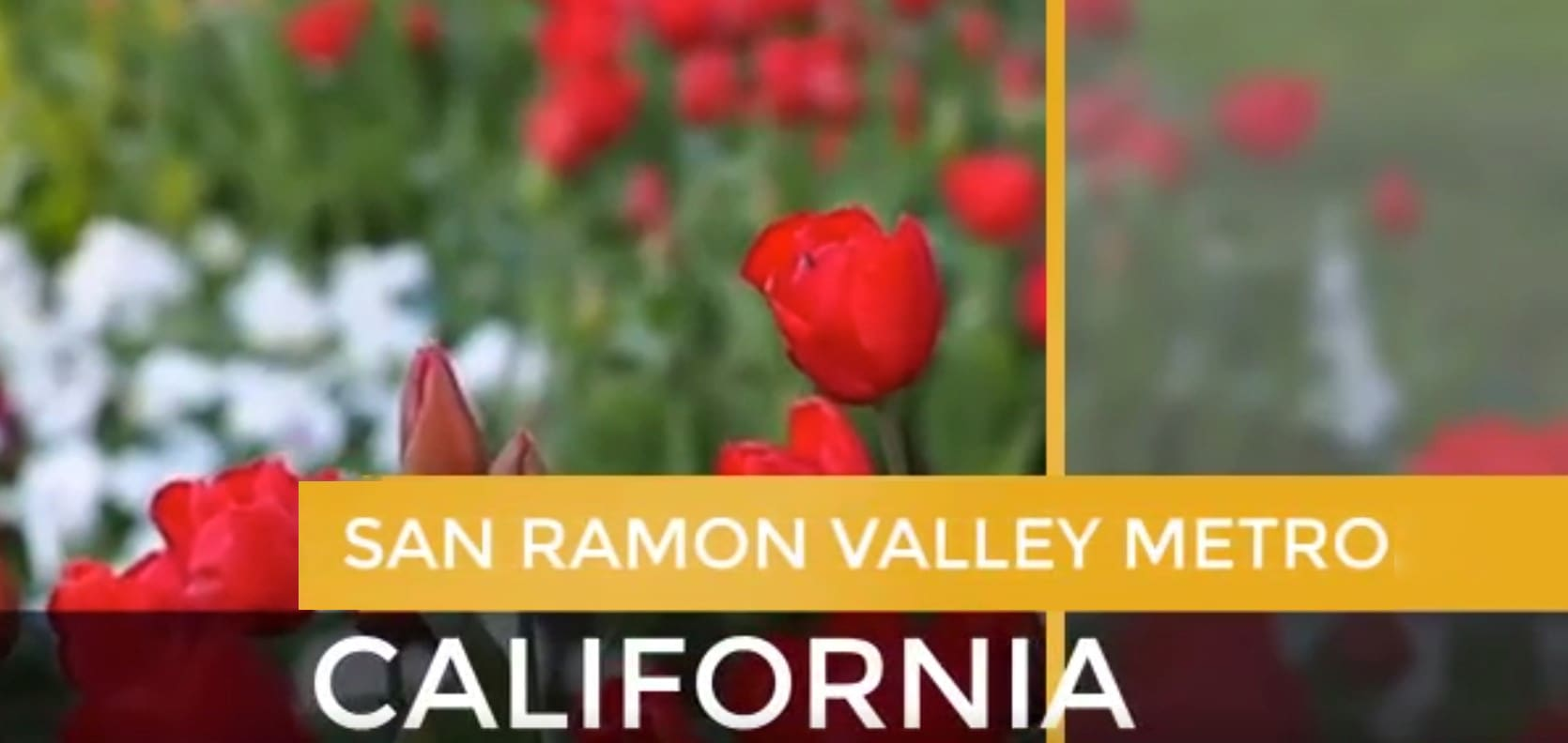 San Ramon Valley Metro video preview