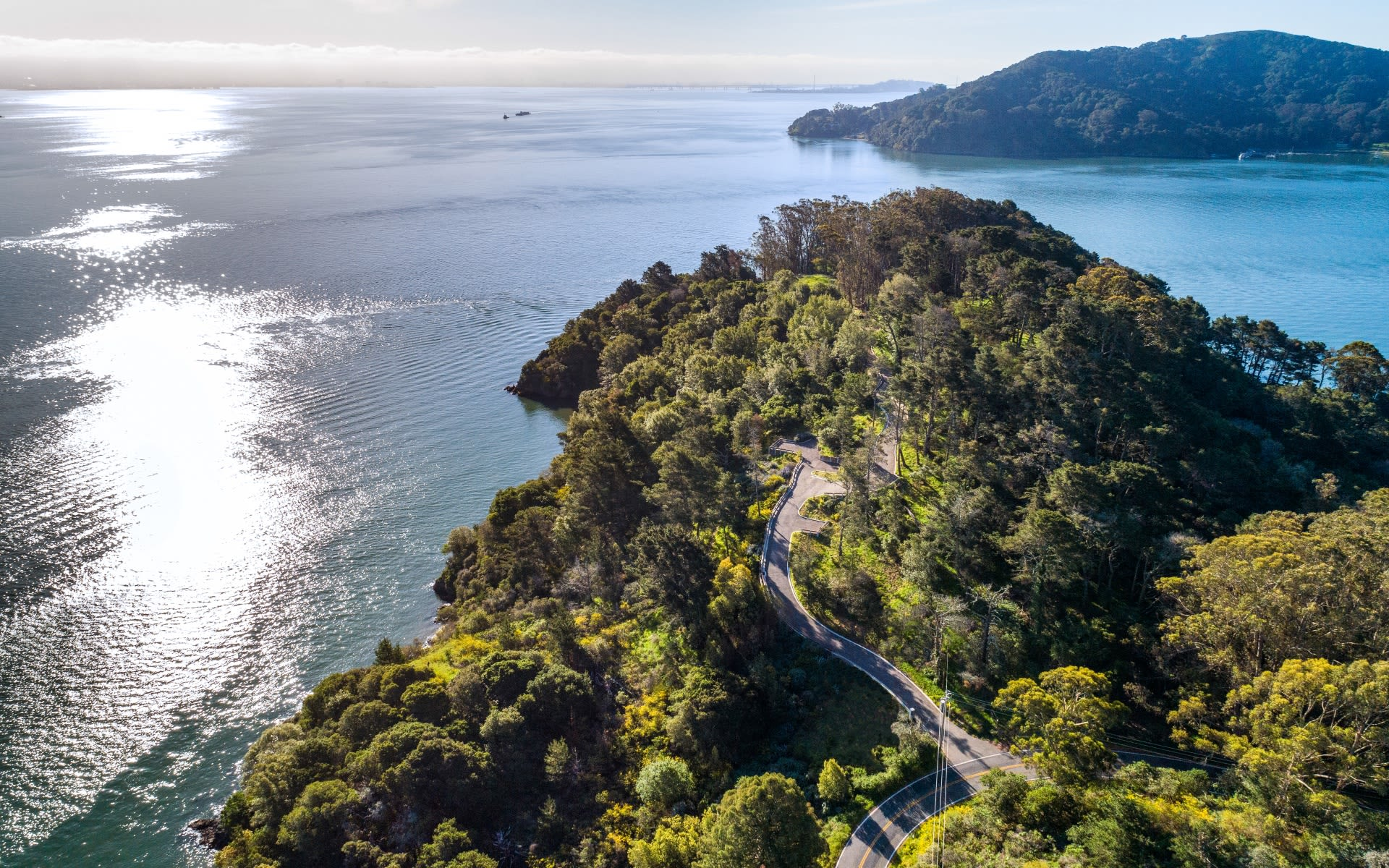 This Friday, 14.5 Acres with 2,000 ft of Bay Frontage in Tiburon, CA Heads to Luxury Auction®