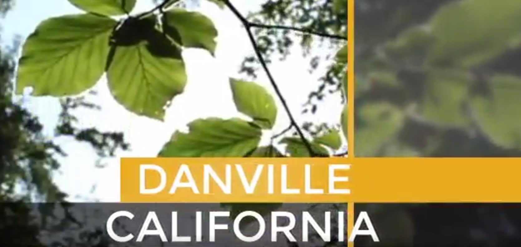 Danville video preview