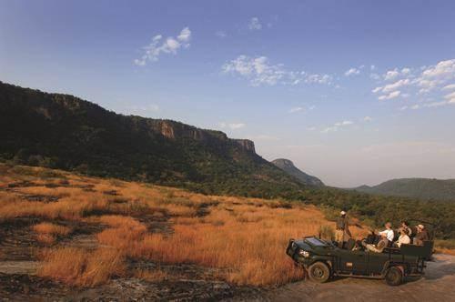 RESIDE | Next-Level Safaris