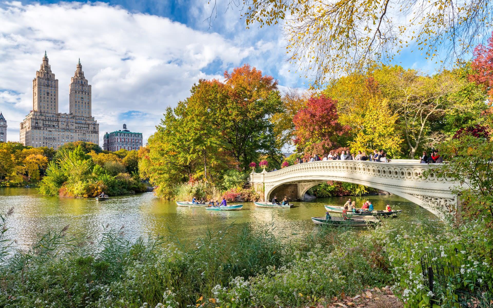 A walk through Central Park video preview