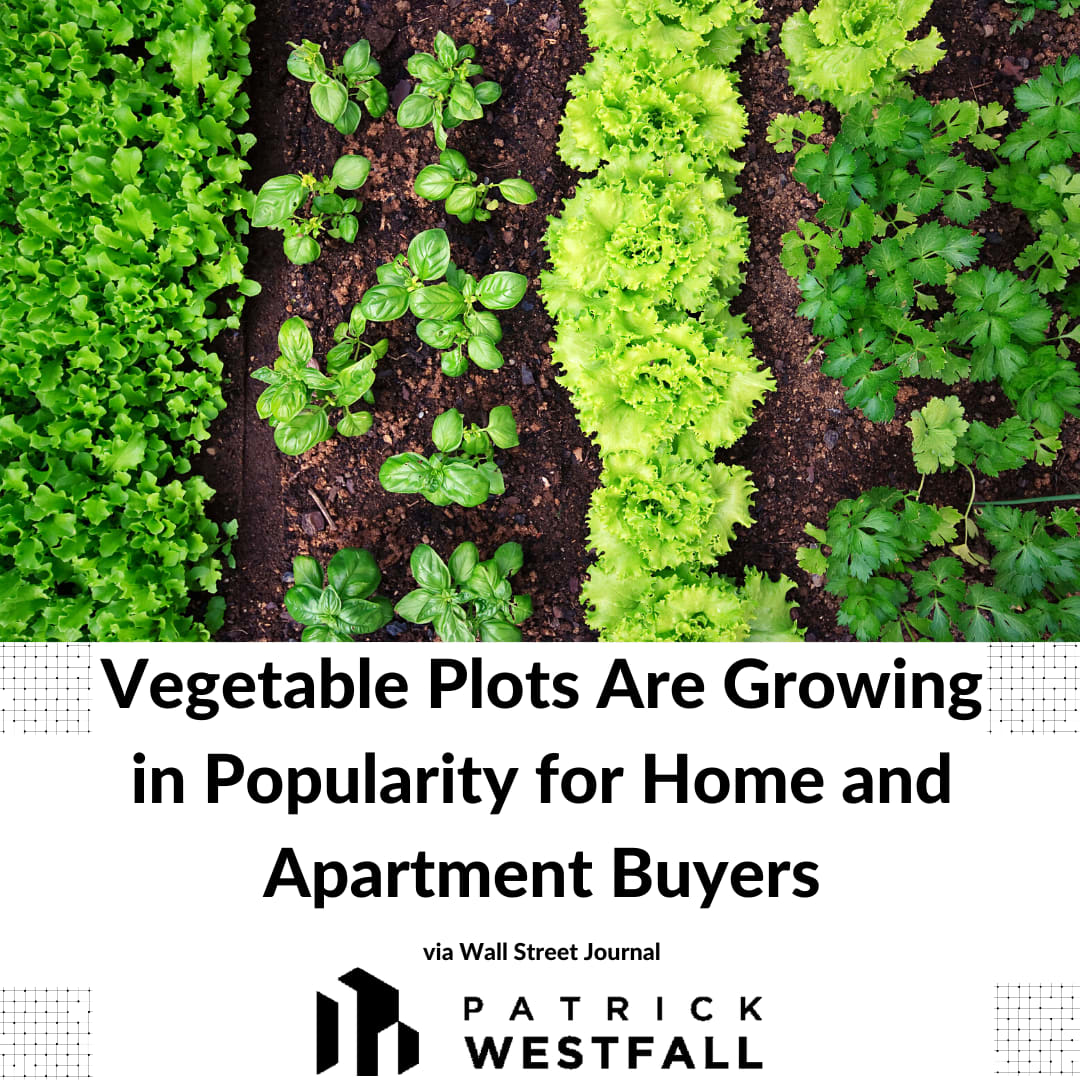 The Budding Popularity of Vegetable Plots Among Homeowners