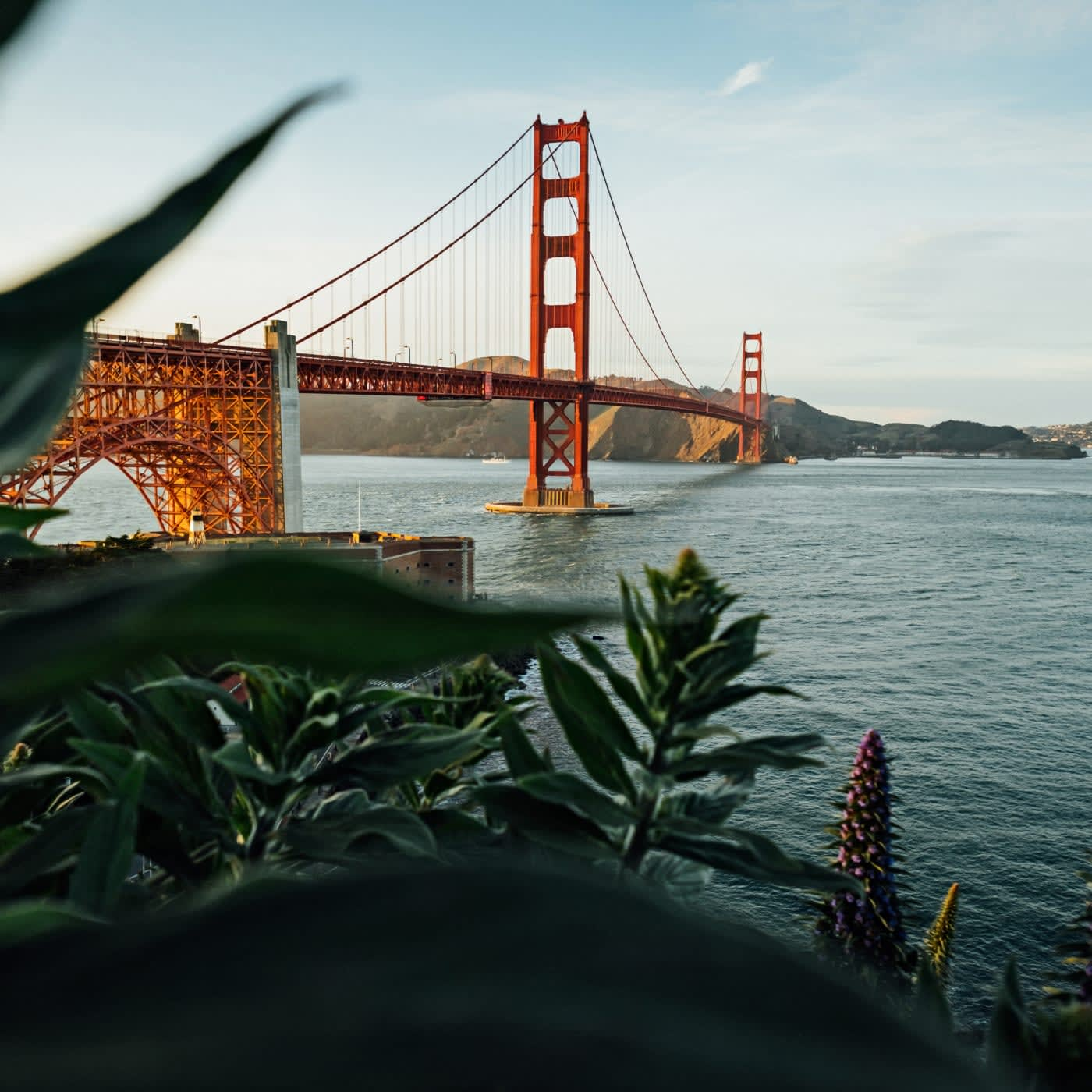 San Francisco image