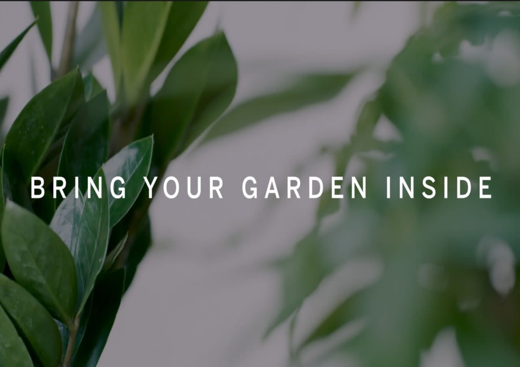 RESIDE MOMENTS - Bring Your Garden Inside video preview