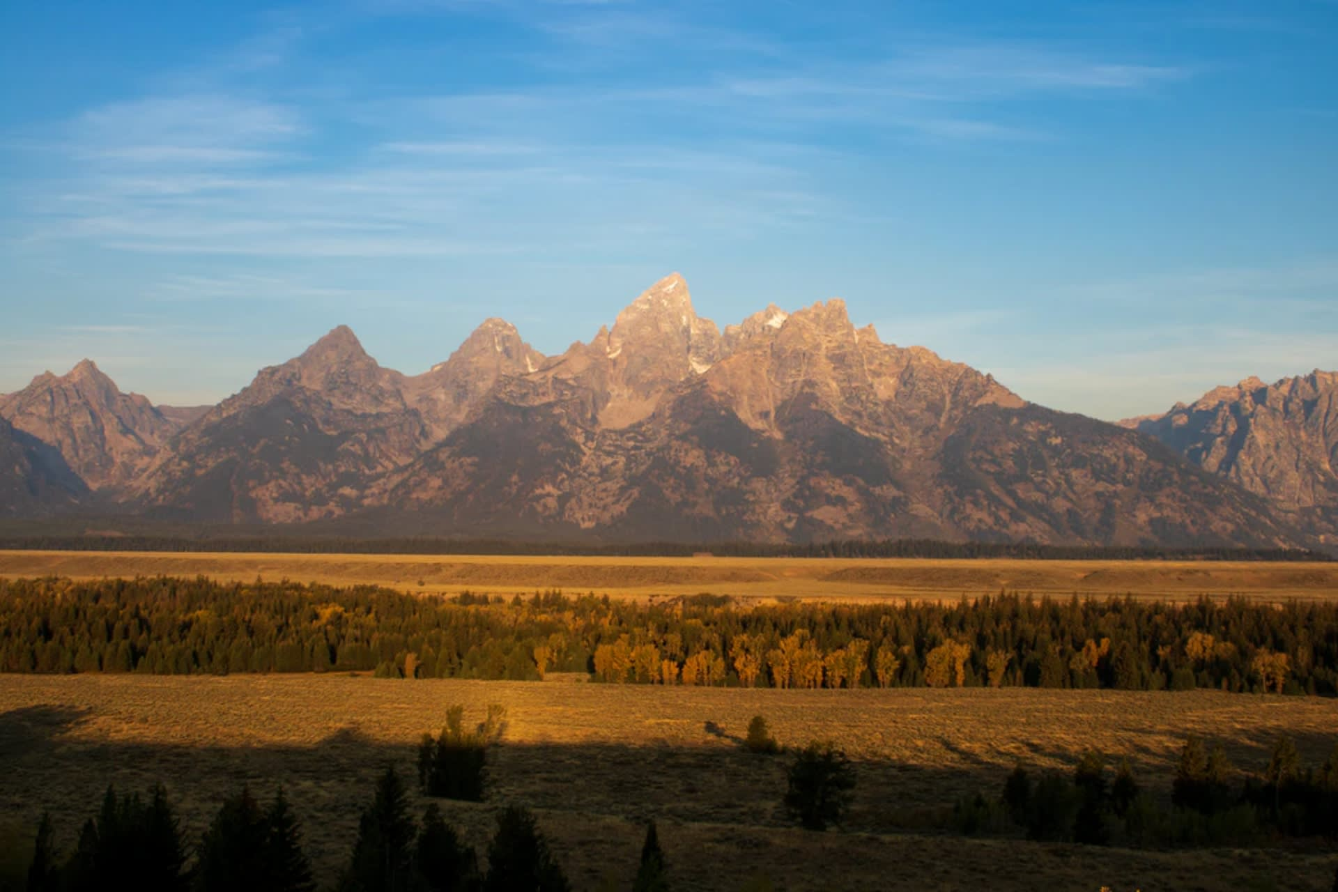 Businesses Giving Back in Jackson Hole