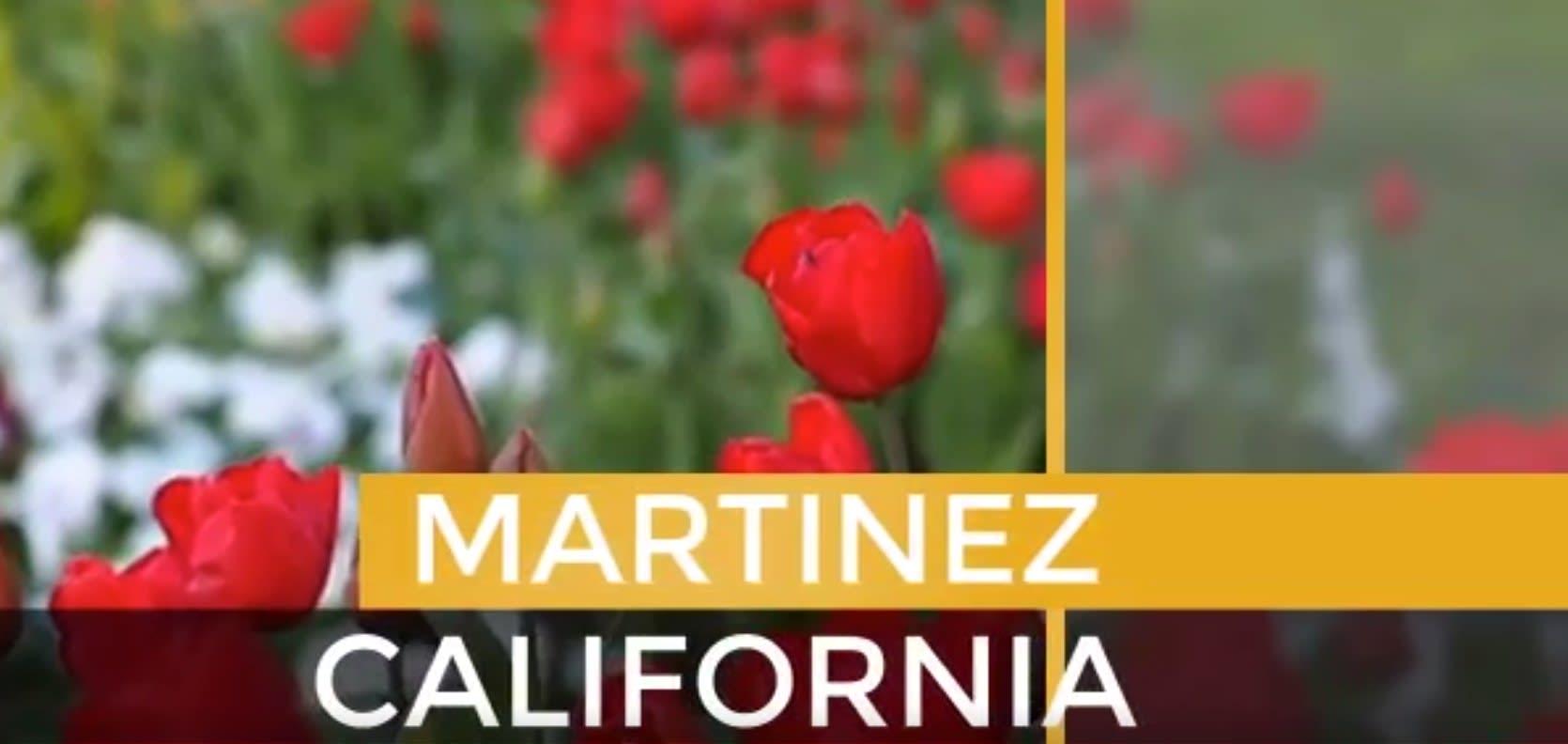 Martinez video preview