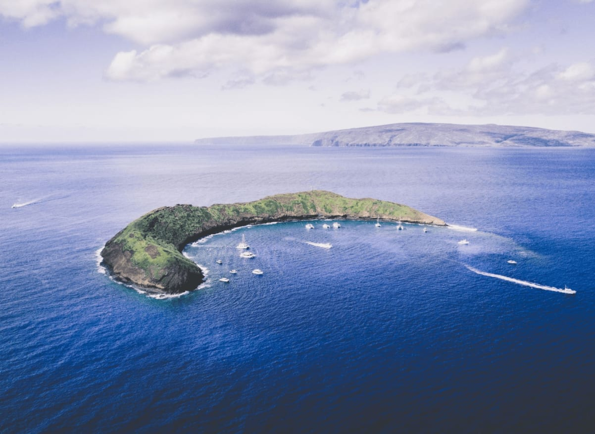 Unique and Historical Facts You Didn't Know About Maui