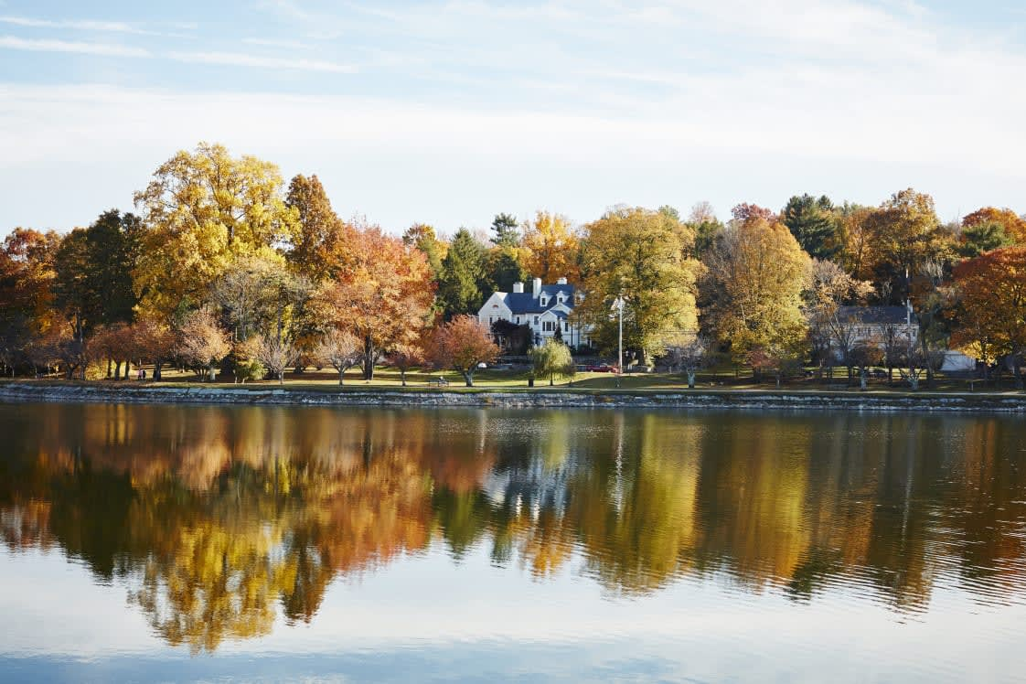 Westchester Happenings: Fall 2020