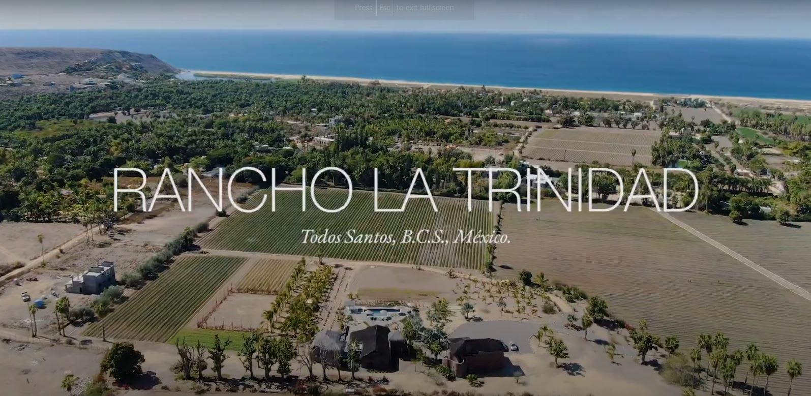 Rancho La Trinidad - Todos Santos BCS, Mexico video preview